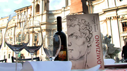 Wine bar - Piazza Navona, Roma